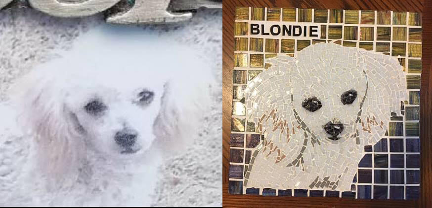 Pet Memorial Mosaic Blondie