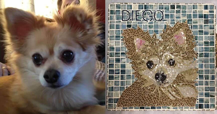 Pet Memorial Mosaic Diego