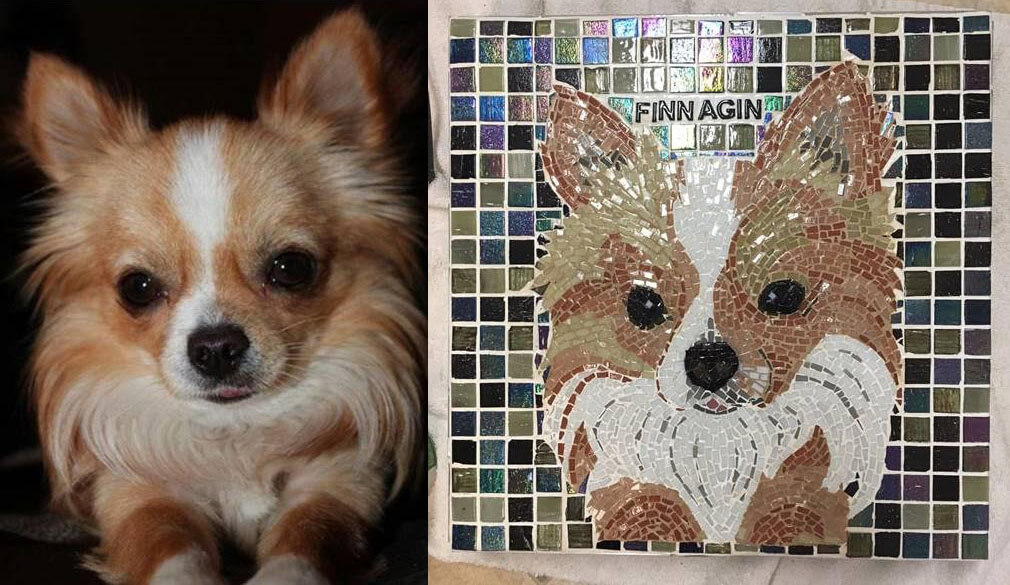 Pet Memorial Mosaic Finnagin