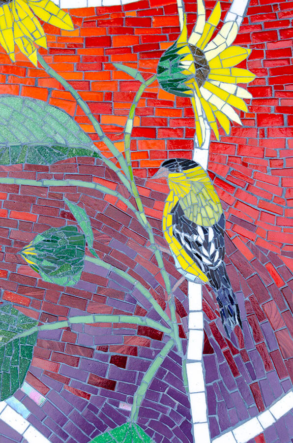 Mosaic Oriole on Sunflower