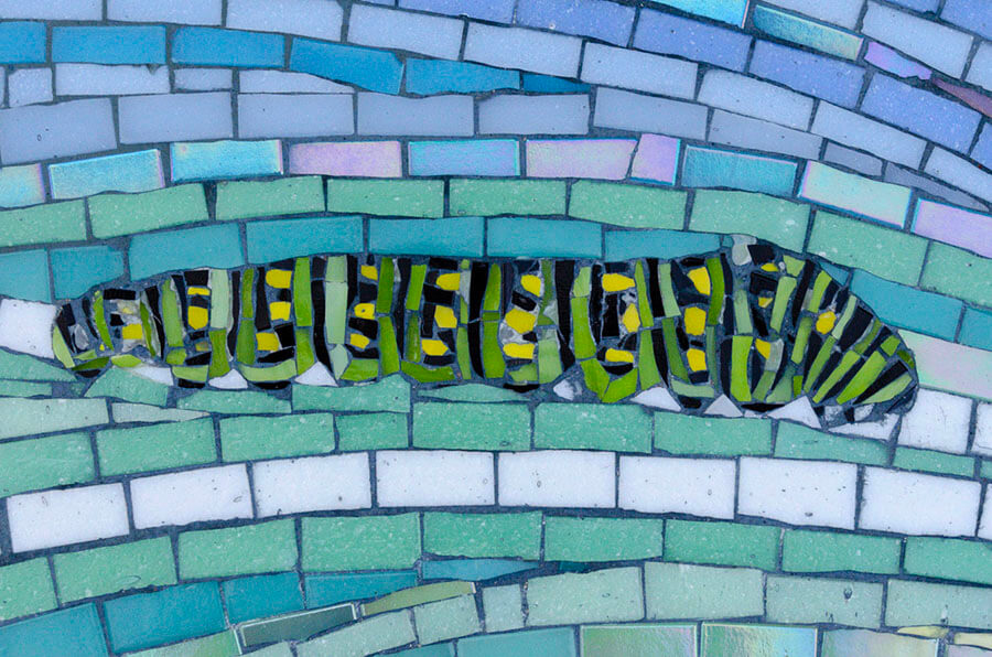 Mosaic Swallowtail Caterpillar