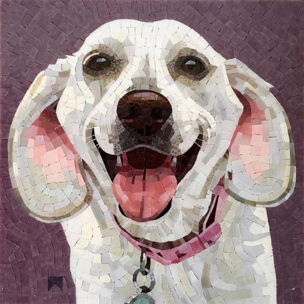 Mosaic Pet Portrait Cali